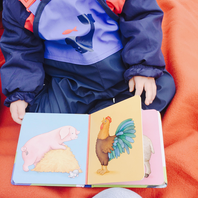 Kind schaut Bilderbuch an