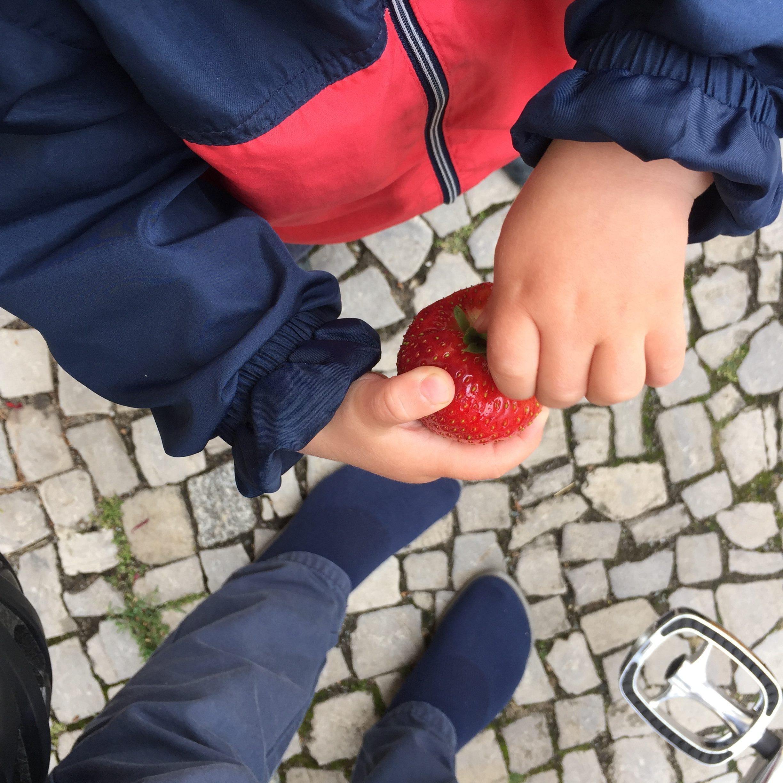 Kleinkind nascht Erdbeeren