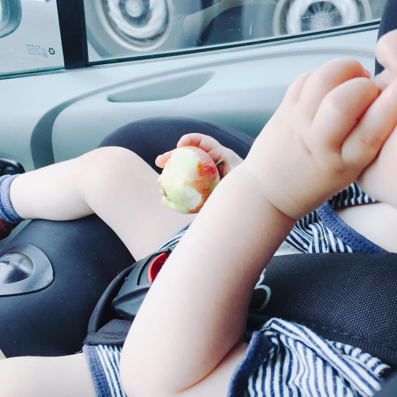 Kleinkind isst Apfel BLW